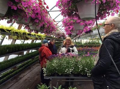 Annmarie visar runt i växthusen