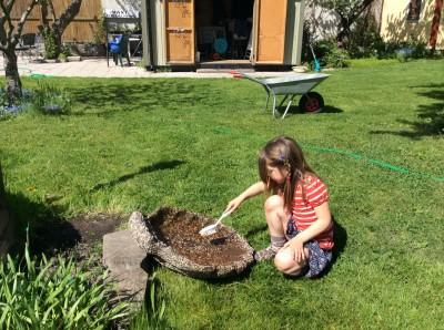 Bori tvättar fågelbadet - maj 2014